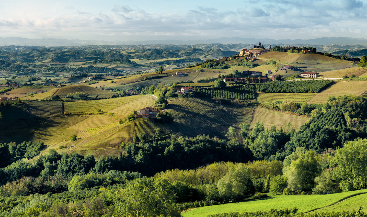 <strong>ITALIA</strong> / <strong>LANGHE</strong>